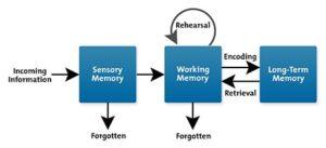 cognitive load - mental input