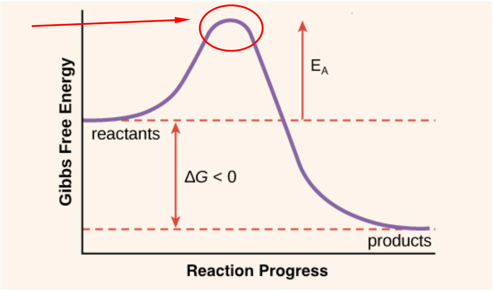 activation energy science